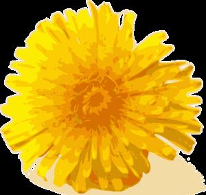 yellow-31430_640